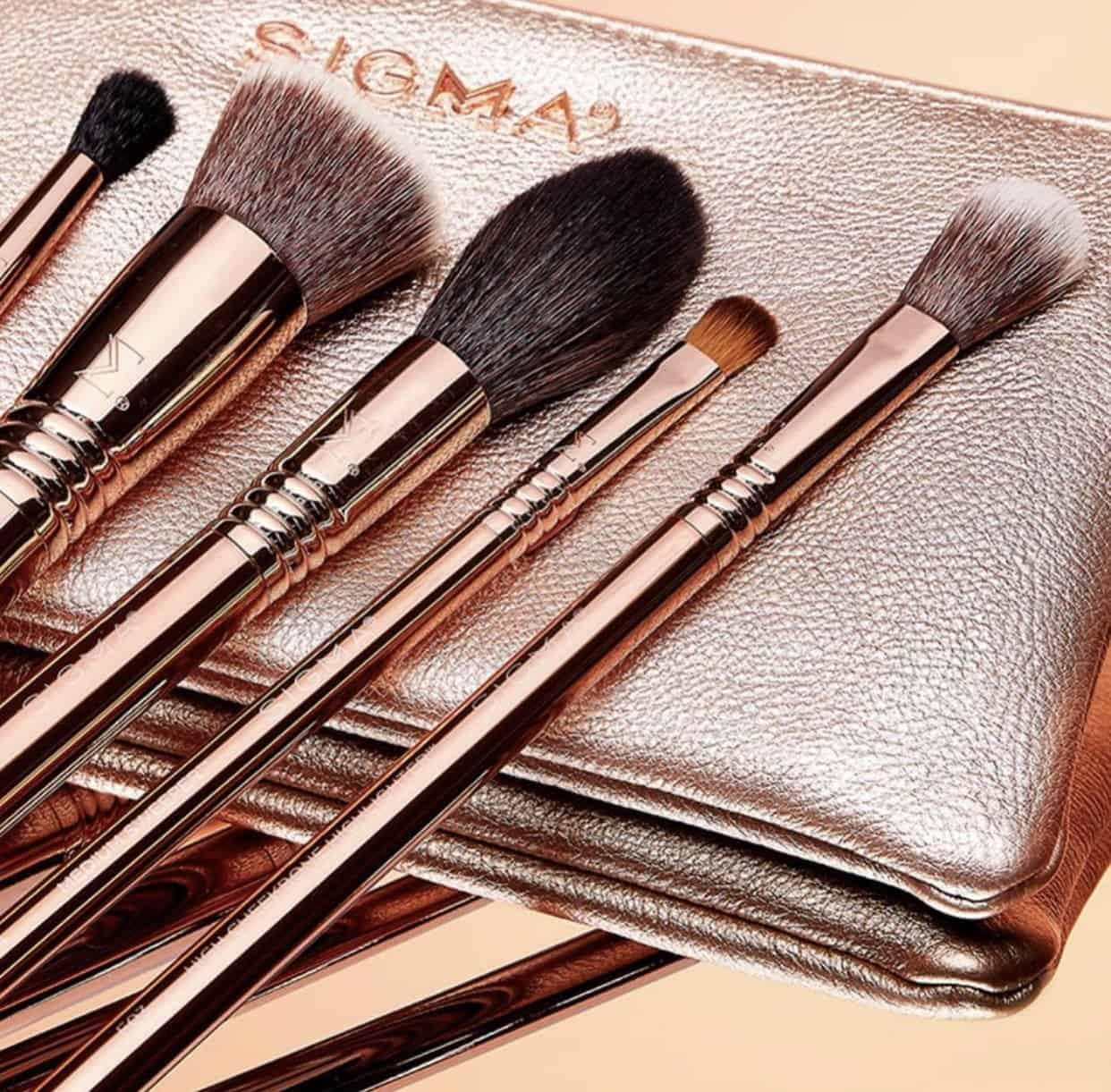 Sigma Iconic Brush Set