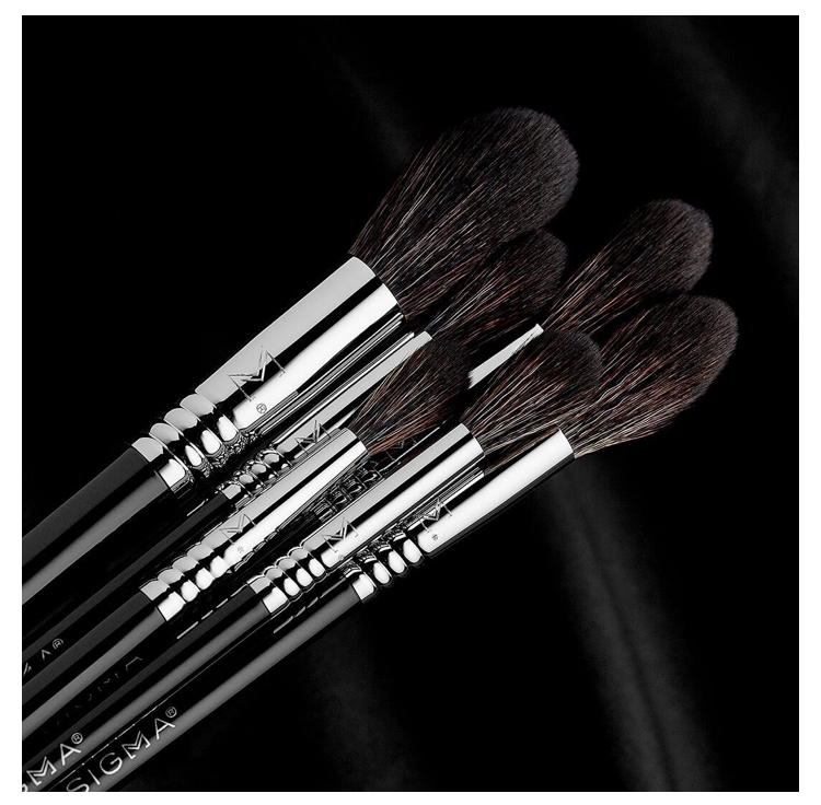 Sigma Beauty Soft Blend Brush Set