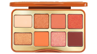 Too Faced Salted Caramel Mini Eye Shadow Palette   Holiday 2020