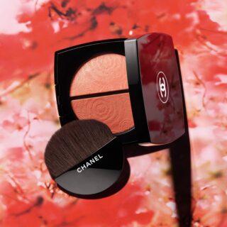 Chanel Fleurs de Printemps Blush and Highlighter Duo
