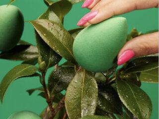 BeautyBlender BioPure Sustainable Beauty Sponge