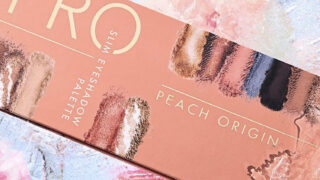 Catrice Pro Peach Origin Slim Eyeshadow Palette