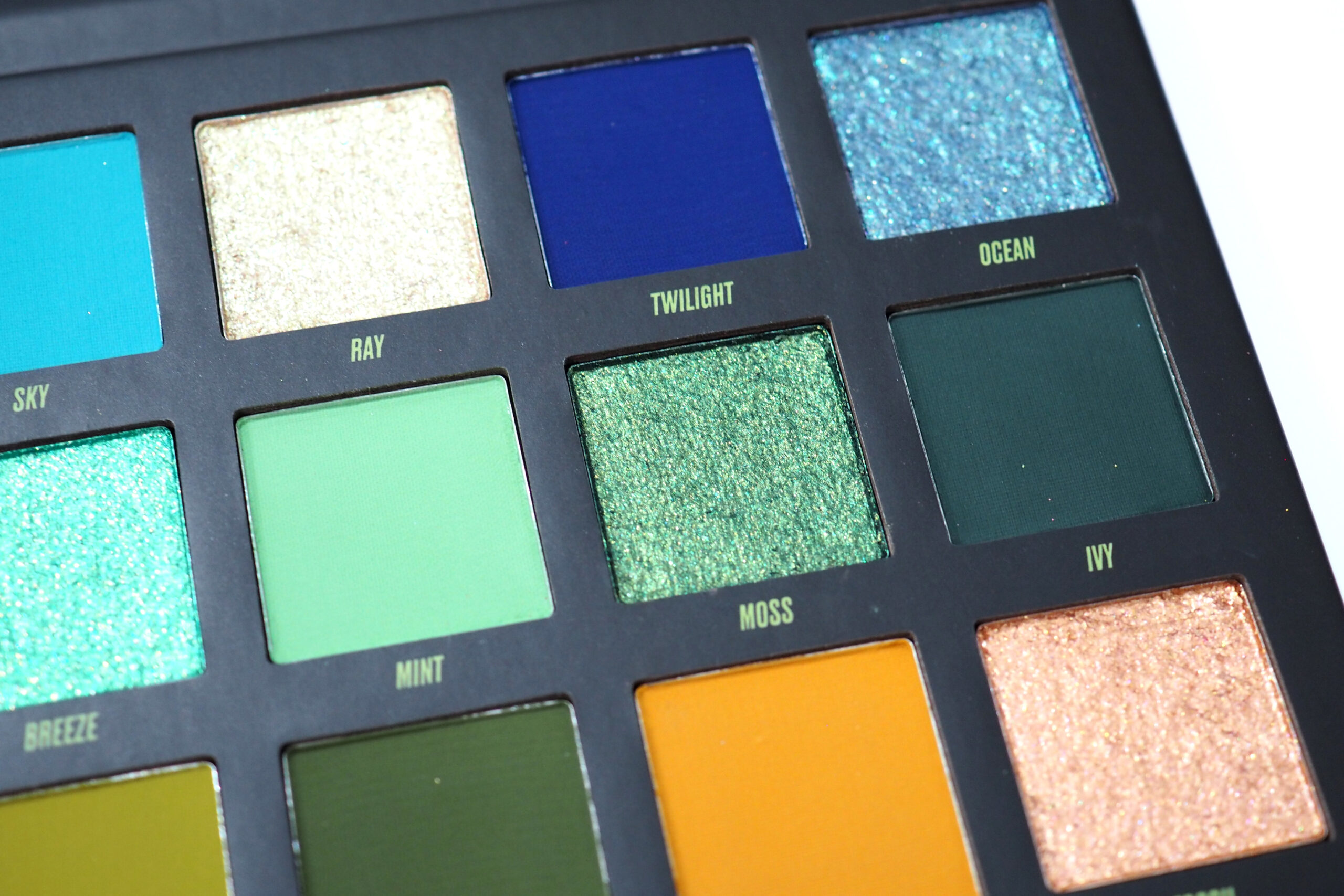By Beauty Bay Wilderness Palette Review / Swatches